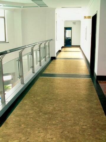 例 走廊 青岛塑胶地板 烟台塑胶地板 威海塑胶地板 LG塑胶地板 韩华图片
